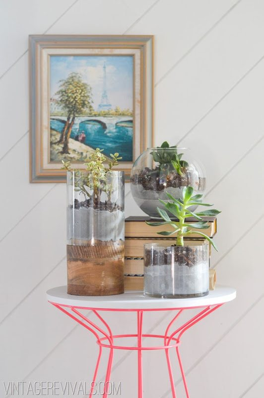 Concrete and Glass Succulent Planter vintagerevivals.com[2]