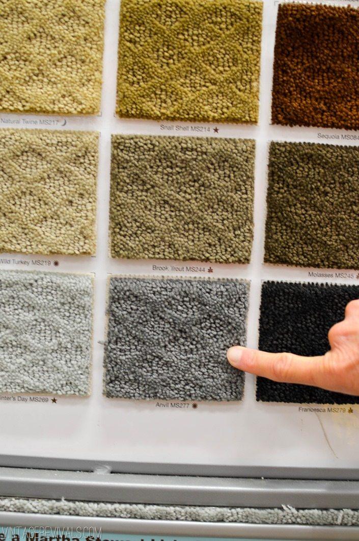 Shopping For Carpet-2