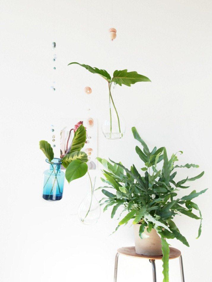 DIY-Floating-Vases-hanging-greenery