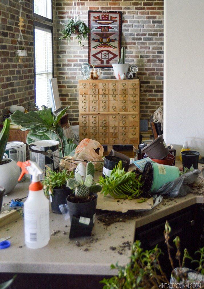 Indoor Plant Trellis Wall-23
