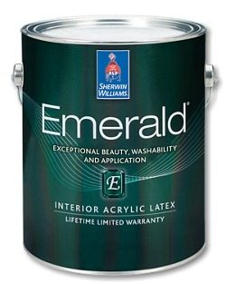 Eggshell Paint Oil Or Acrylic