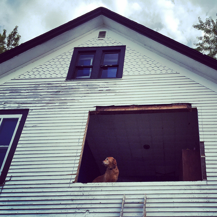waldo_windows